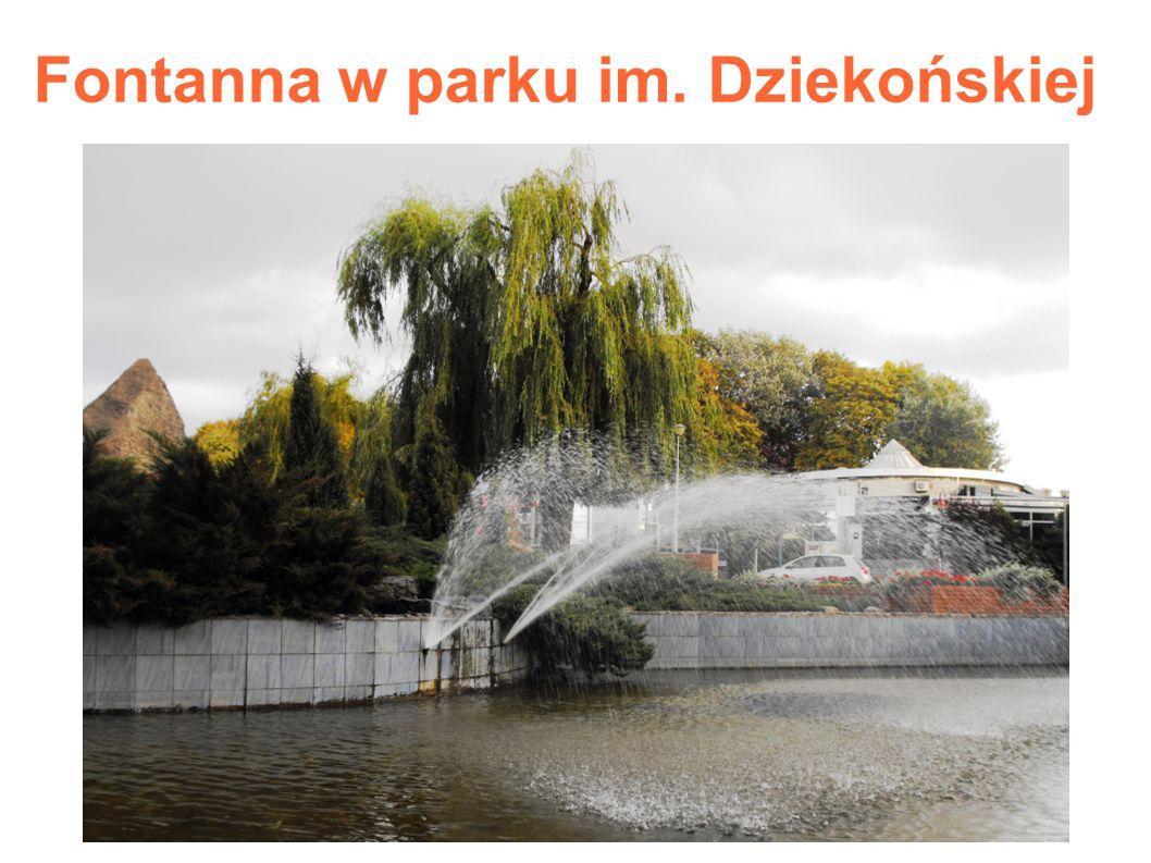 Fontanna w parku im. Dziekońskiej