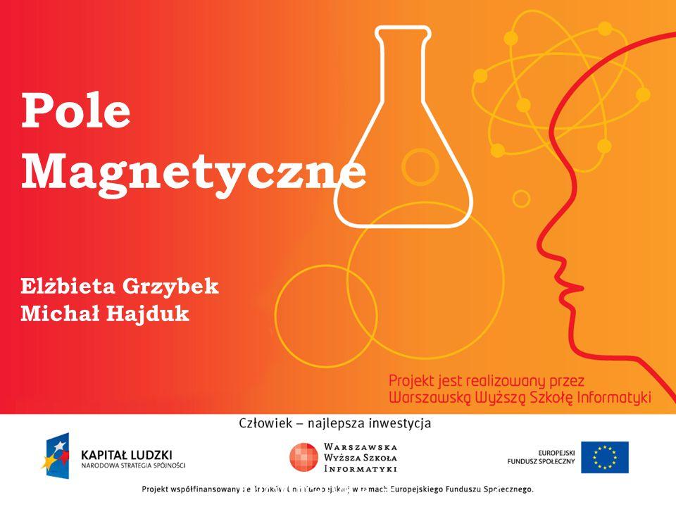 Pole Magnetyczne Elżbieta Grzybek Michał Hajduk informatyka + 2