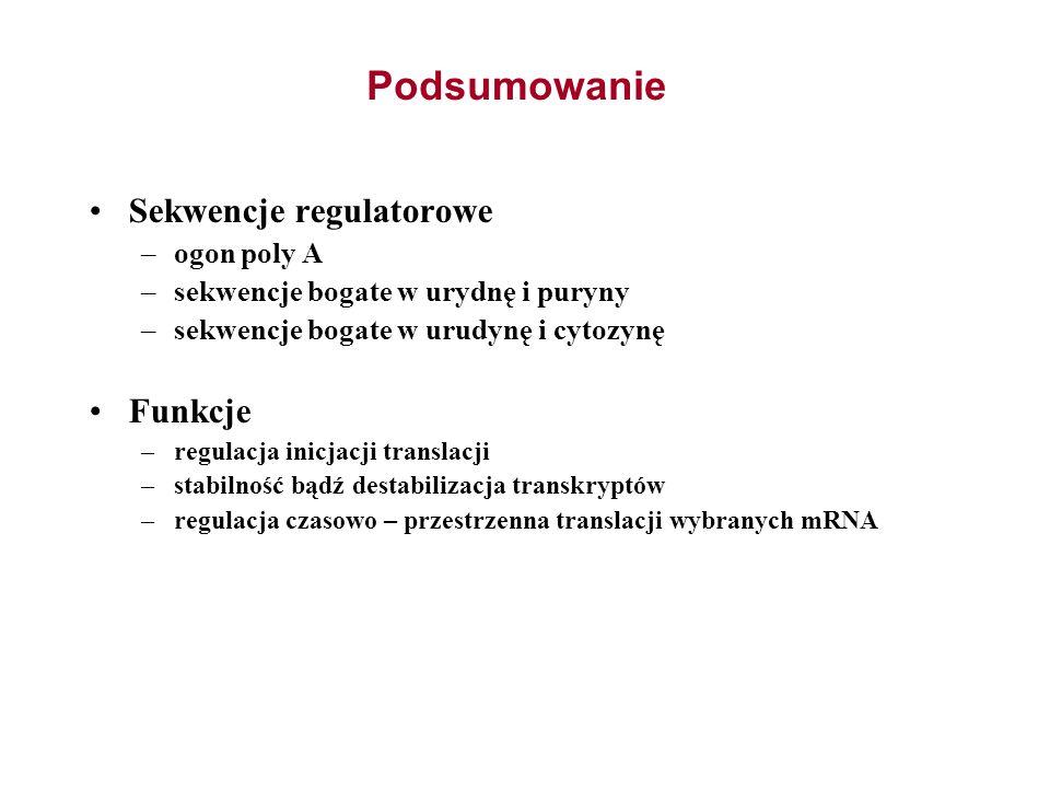 Podsumowanie Sekwencje regulatorowe –ogon poly A –sekwencje bogate w urydnę i puryny –sekwencje bogate w urudynę i cytozynę Funkcje –regulacja inicjac