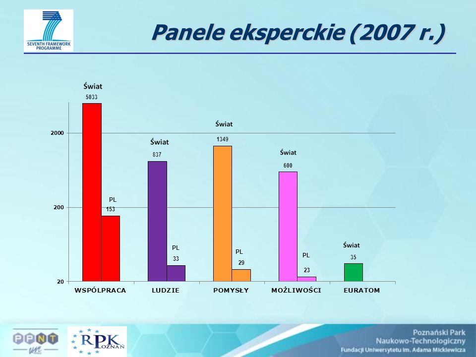 Panele eksperckie (2007 r.)