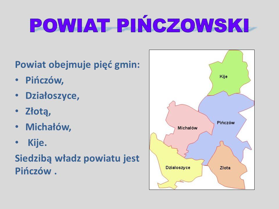 Powiat obejmuje pięć gmin: Pińczów, Działoszyce, Złotą, Michałów, Kije. Siedzibą władz powiatu jest Pińczów.