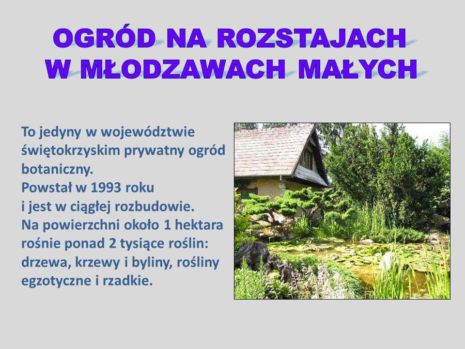 To jedyny w województwie świętokrzyskim prywatny ogród botaniczny. Powstał w 1993 roku i jest w ciągłej rozbudowie. Na powierzchni około 1 hektara roś