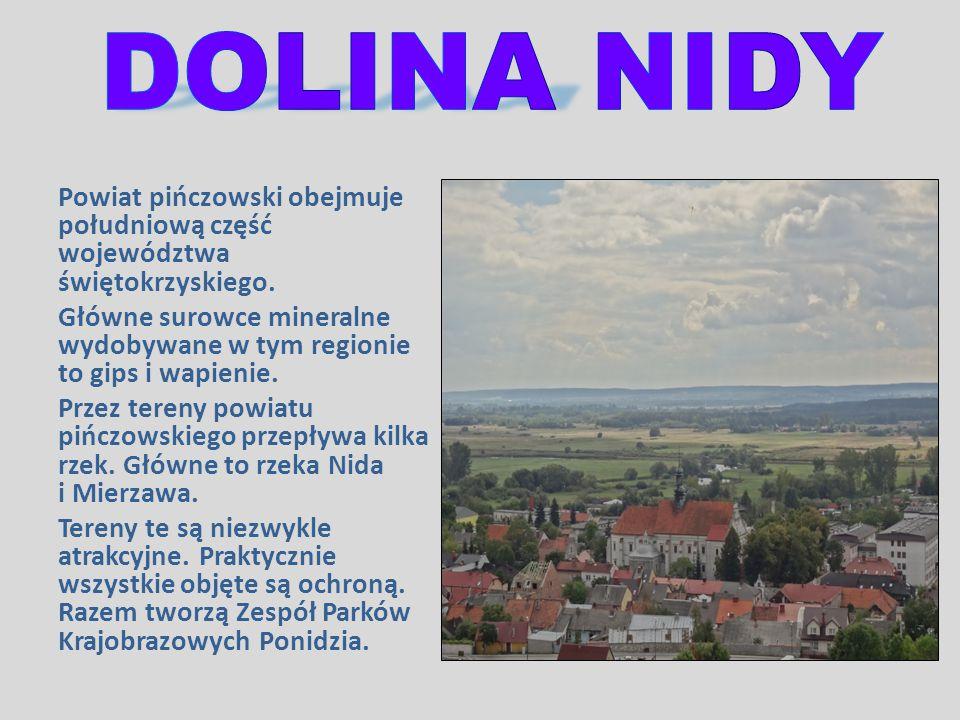 Powiat pińczowski obejmuje południową część województwa świętokrzyskiego. Główne surowce mineralne wydobywane w tym regionie to gips i wapienie. Przez