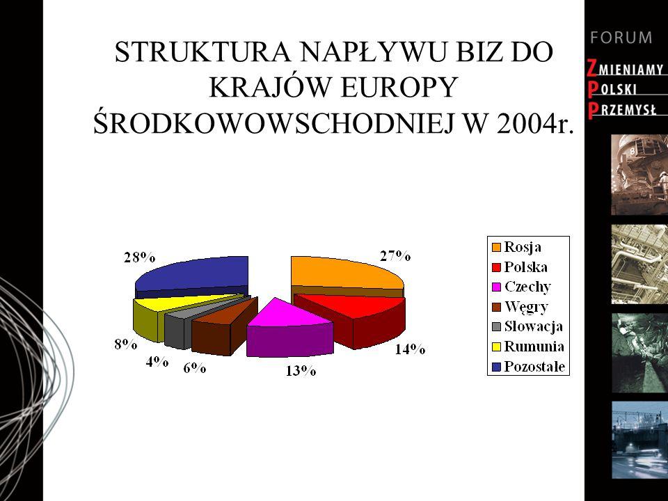 STRUKTURA NAPŁYWU BIZ DO KRAJÓW EUROPY ŚRODKOWOWSCHODNIEJ W 2004r.