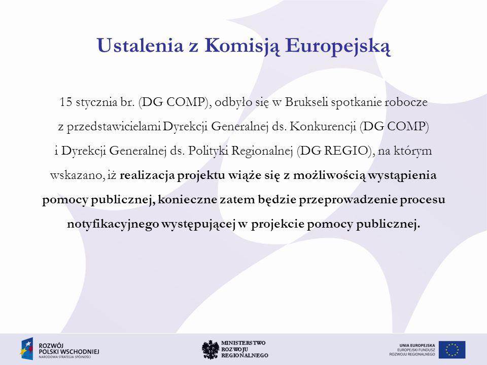 Ustalenia z Komisją Europejską 15 stycznia br. (DG COMP), odbyło się w Brukseli spotkanie robocze z przedstawicielami Dyrekcji Generalnej ds. Konkuren