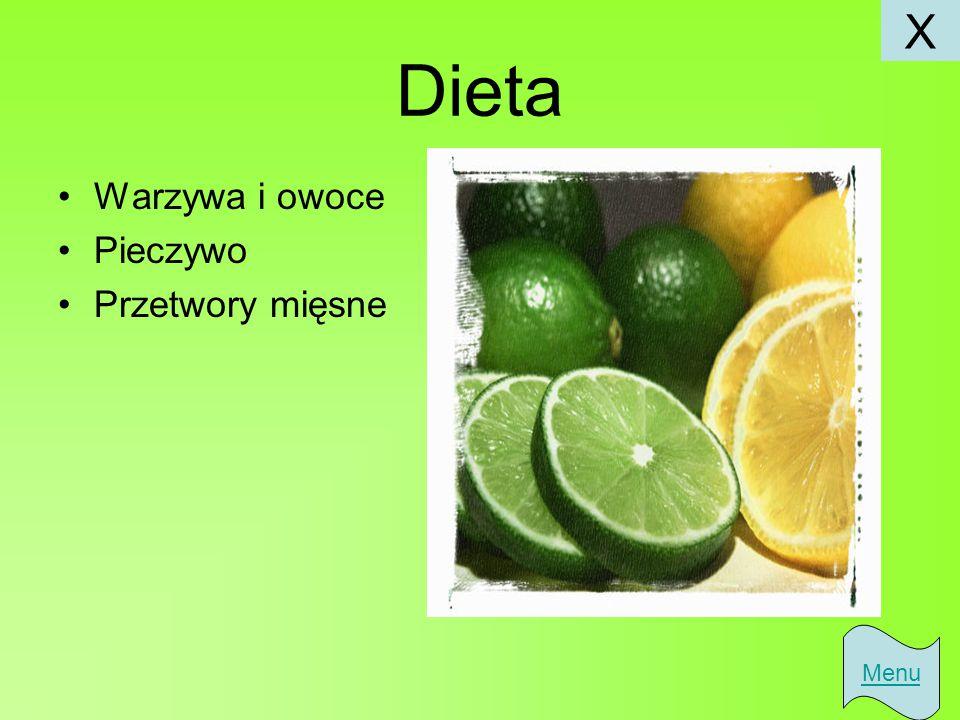 Dieta Warzywa i owoce Pieczywo Przetwory mięsne Menu X