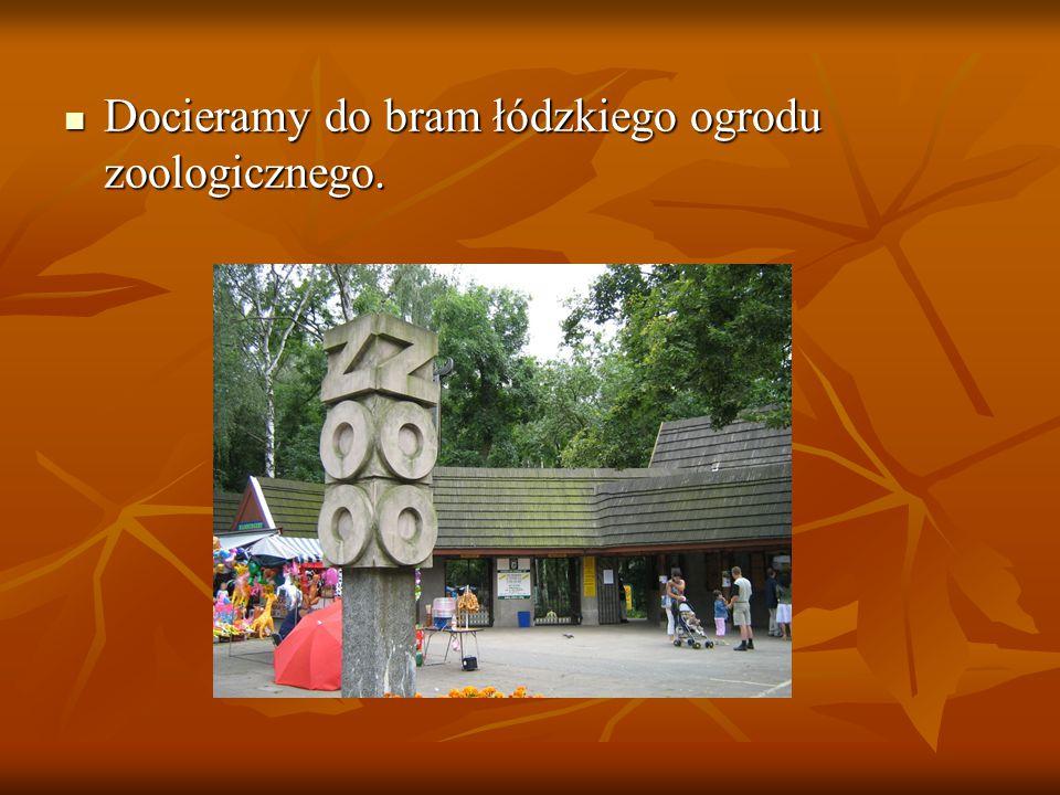 Docieramy do bram łódzkiego ogrodu zoologicznego. Docieramy do bram łódzkiego ogrodu zoologicznego.