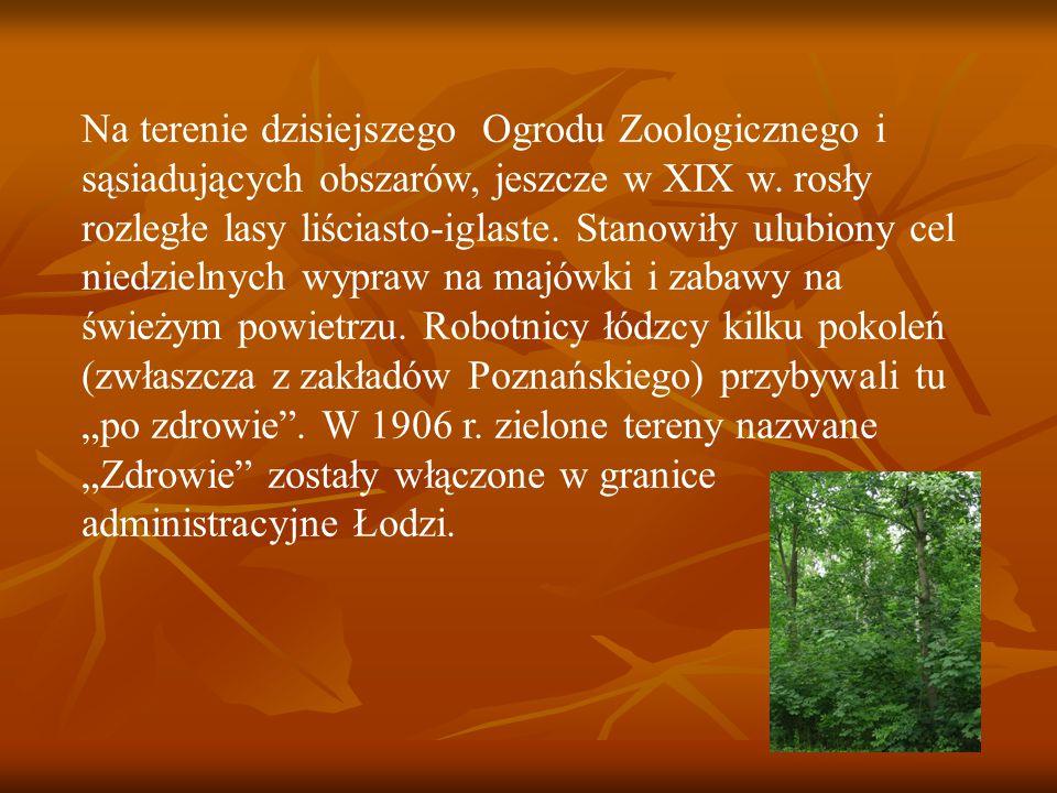 Na terenie dzisiejszego Ogrodu Zoologicznego i sąsiadujących obszarów, jeszcze w XIX w.