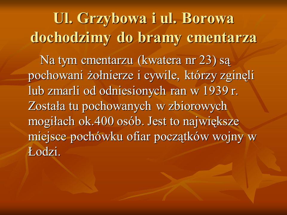 Ul. Grzybowa i ul.