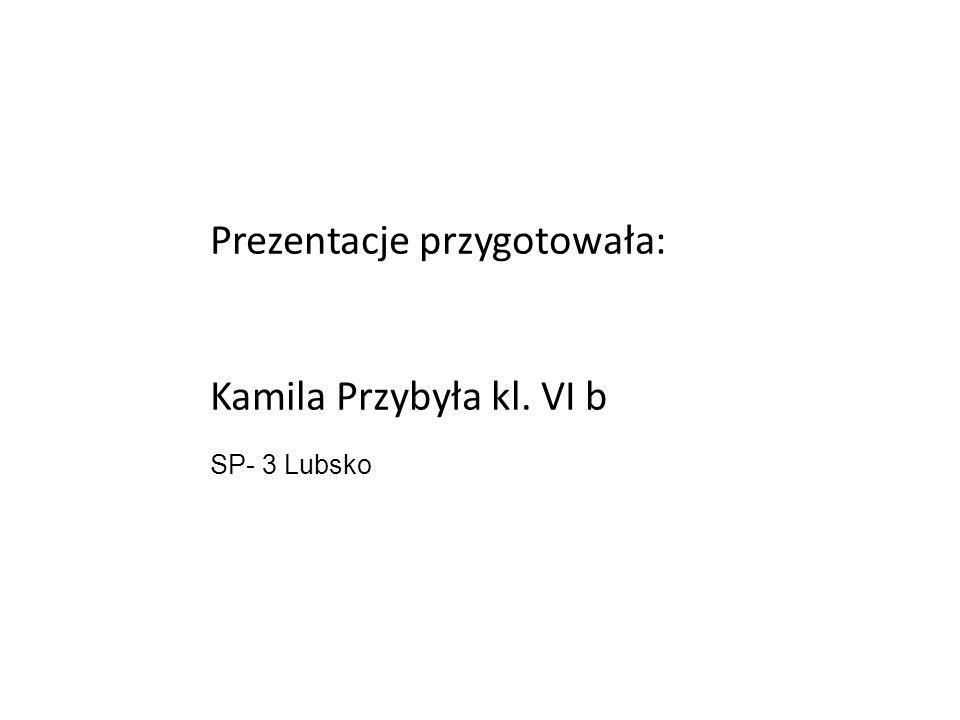 Prezentacje przygotowała: Kamila Przybyła kl. VI b SP- 3 Lubsko