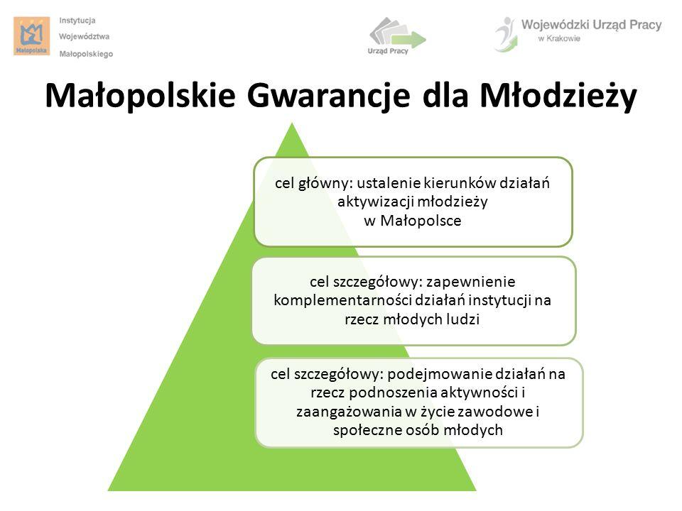 cel główny: ustalenie kierunków działań aktywizacji młodzieży w Małopolsce cel szczegółowy: zapewnienie komplementarności działań instytucji na rzecz