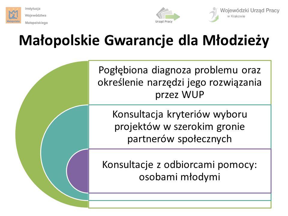 Pogłębiona diagnoza problemu oraz określenie narzędzi jego rozwiązania przez WUP Konsultacja kryteriów wyboru projektów w szerokim gronie partnerów sp