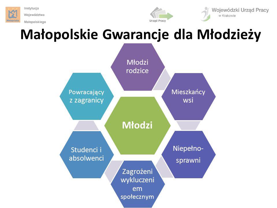 Małopolskie Gwarancje dla Młodzieży Młodzi Młodzi rodzice Mieszkańcy wsi Niepełno- sprawni Zagrożeni wykluczeni em społecznym Studenci i absolwenci Po