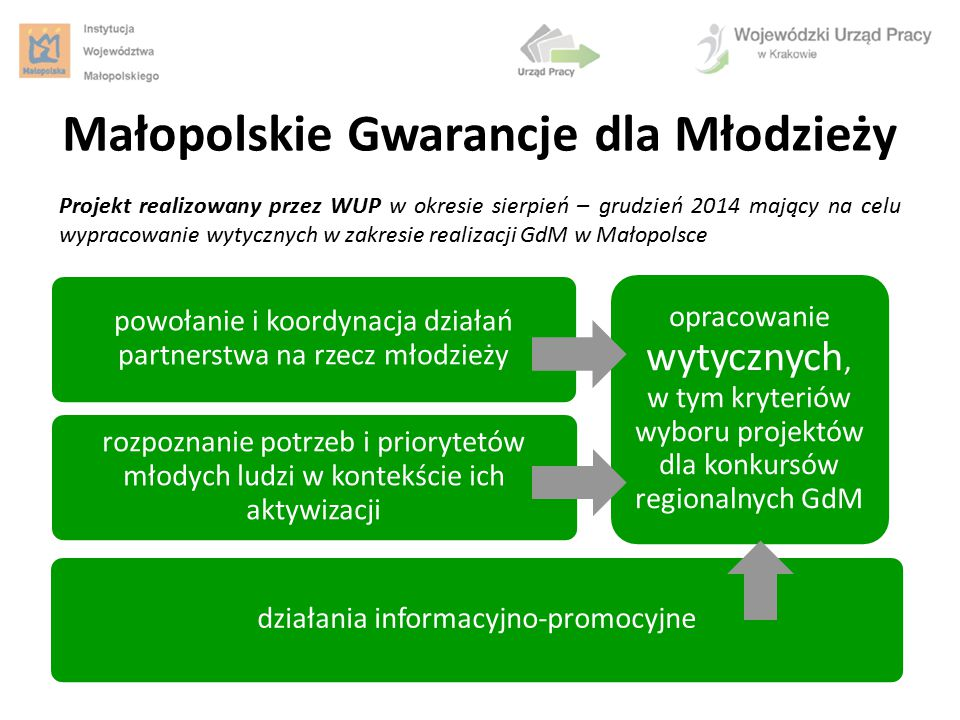 cel główny: ustalenie kierunków działań aktywizacji młodzieży w Małopolsce cel szczegółowy: zapewnienie komplementarności działań instytucji na rzecz młodych ludzi cel szczegółowy: podejmowanie działań na rzecz podnoszenia aktywności i zaangażowania w życie zawodowe i społeczne osób młodych Małopolskie Gwarancje dla Młodzieży