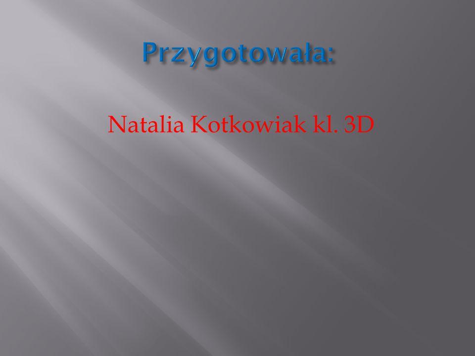Natalia Kotkowiak kl. 3D