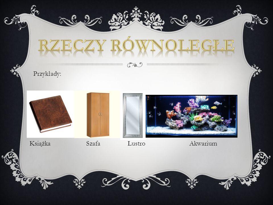 Książka Szafa Lustro Akwarium Przykłady: