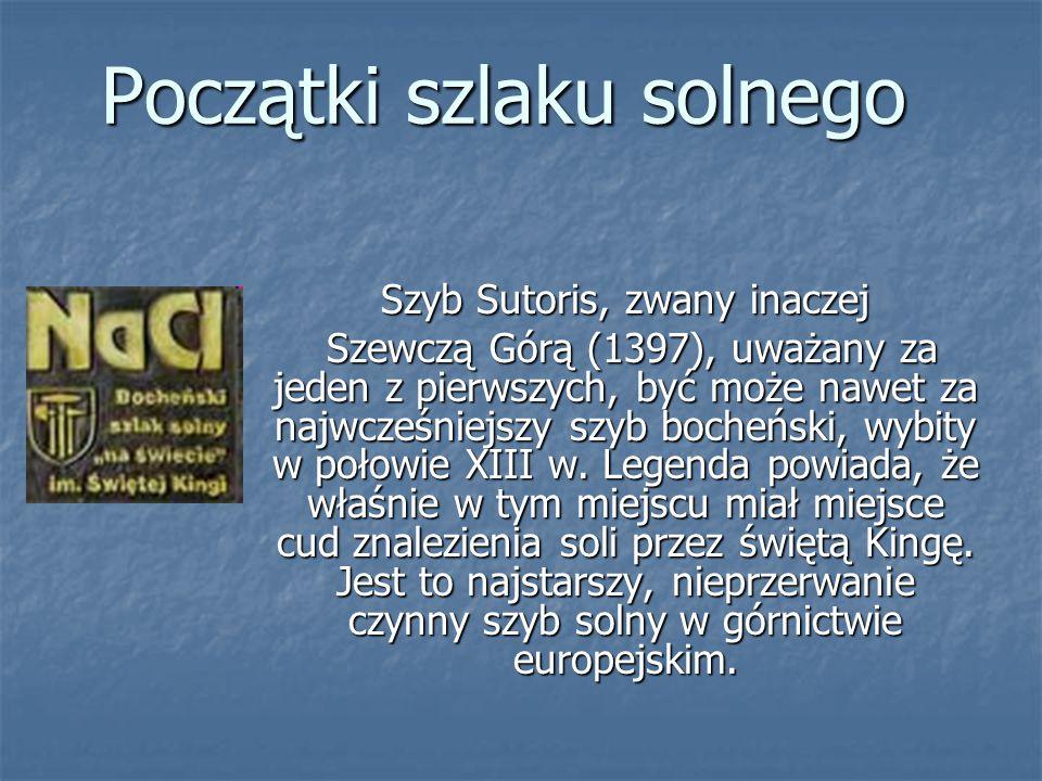 Początki szlaku solnego Szyb Sutoris, zwany inaczej Szewczą Górą (1397), uważany za jeden z pierwszych, być może nawet za najwcześniejszy szyb bocheński, wybity w połowie XIII w.