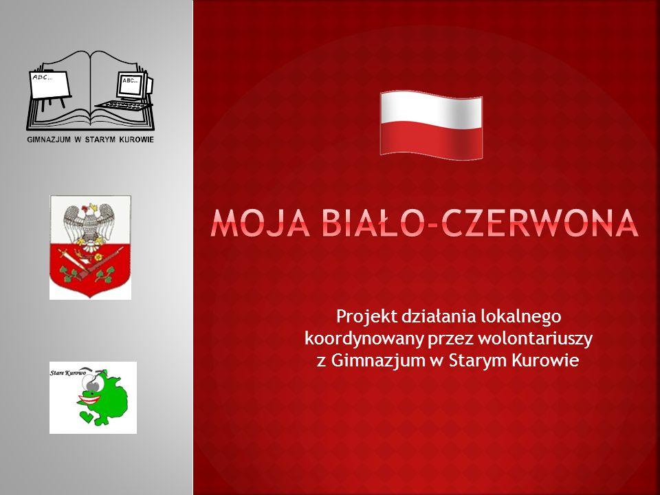 Projekt działania lokalnego koordynowany przez wolontariuszy z Gimnazjum w Starym Kurowie
