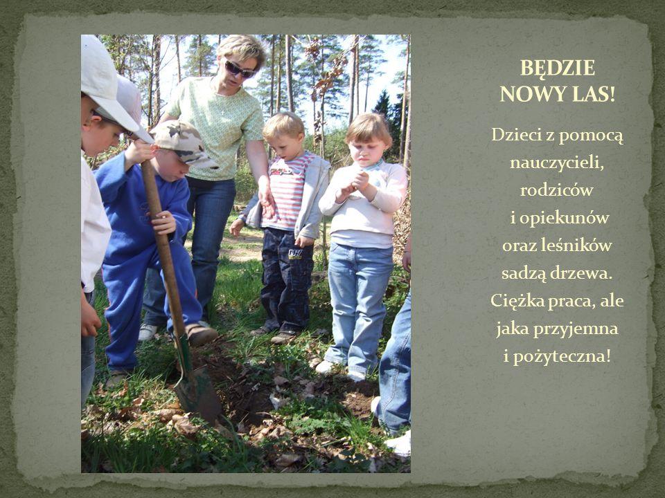 Dzieci z pomocą nauczycieli, rodziców i opiekunów oraz leśników sadzą drzewa.