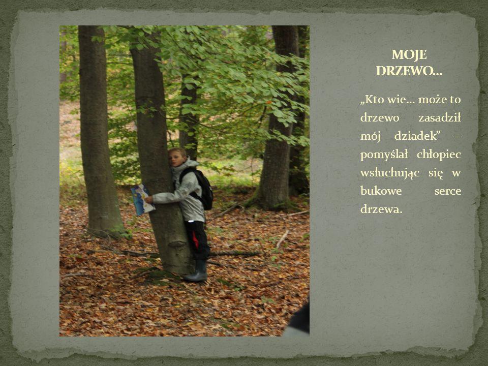 """""""Kto wie… może to drzewo zasadził mój dziadek – pomyślał chłopiec wsłuchując się w bukowe serce drzewa."""