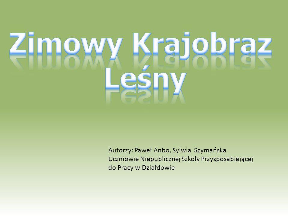 Autorzy: Paweł Anbo, Sylwia Szymańska Uczniowie Niepublicznej Szkoły Przysposabiającej do Pracy w Działdowie