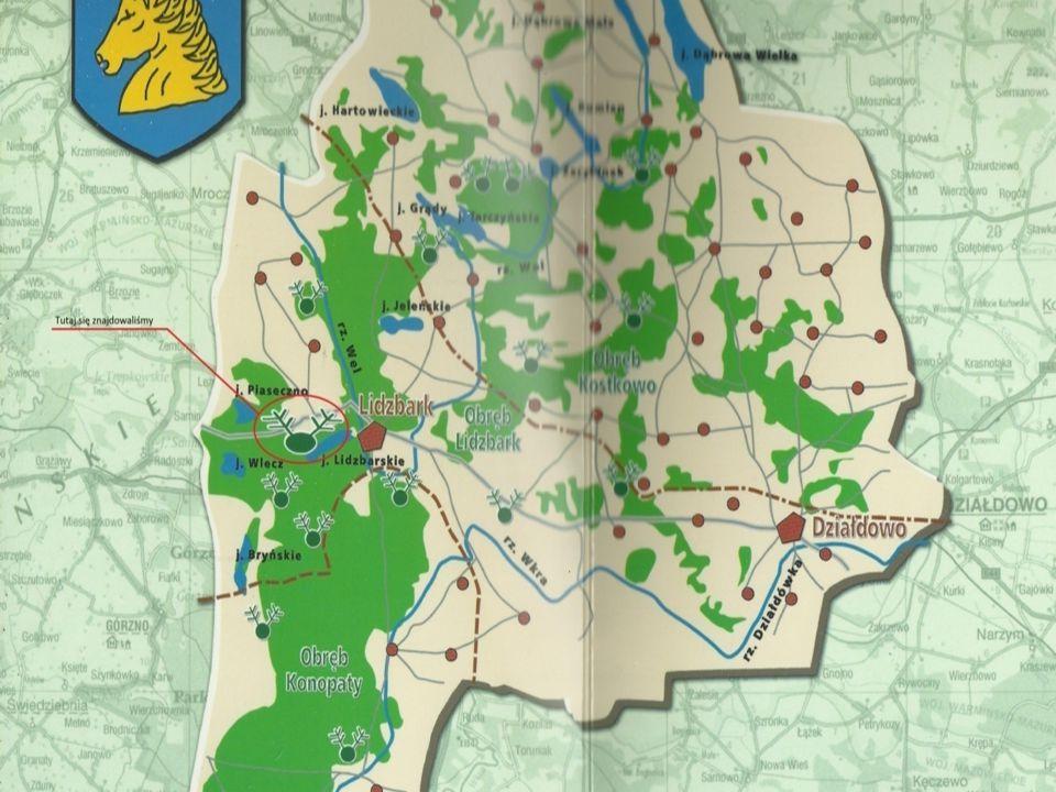Nadleśnictwo Lidzbark zostało utworzone w 1874r.