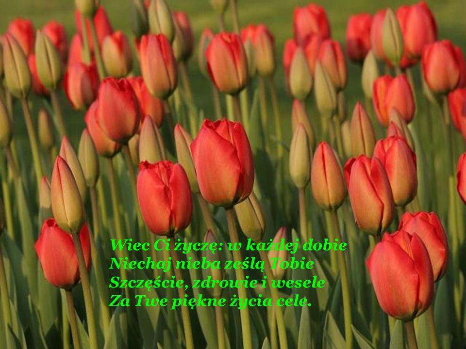 Lecz daremnie, ledwiem krokiem przed Twym miłym stanął wzrokiem, Wszystkie piękne myśli, chęci, poplątały się w pamięci.