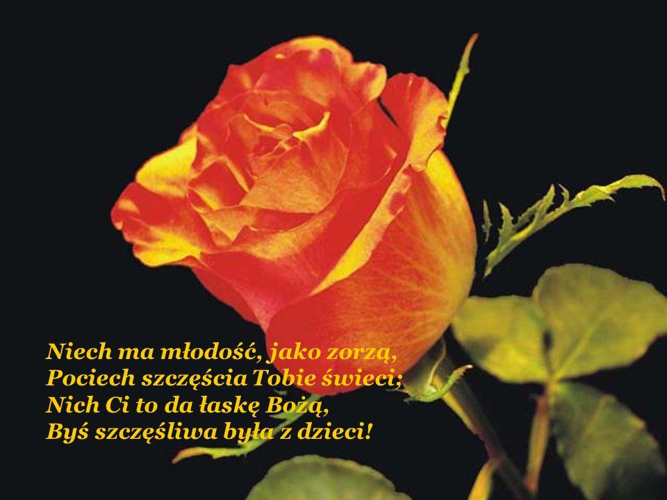 Ile nocy nie przespałaś, Ile w smutku łez wylałaś, Tyle kwiatów dnia każdego Rwij na niwie życia mego, Tyle pociech za Twe znoje, Niech Ci sprawi serc