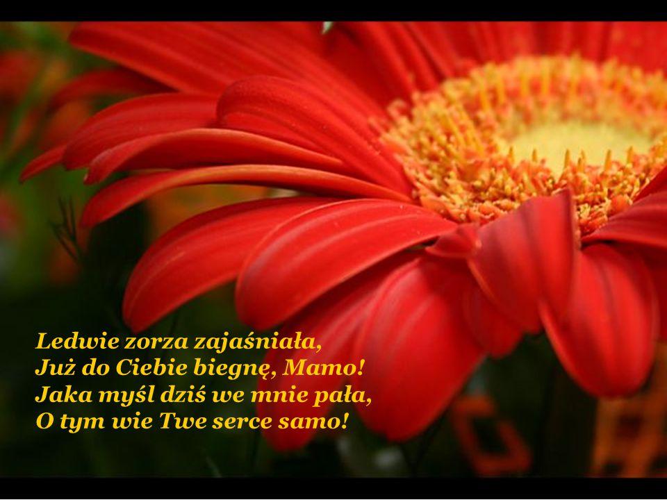 Niech ma młodość, jako zorzą, Pociech szczęścia Tobie świeci; Nich Ci to da łaskę Bożą, Byś szczęśliwa była z dzieci!