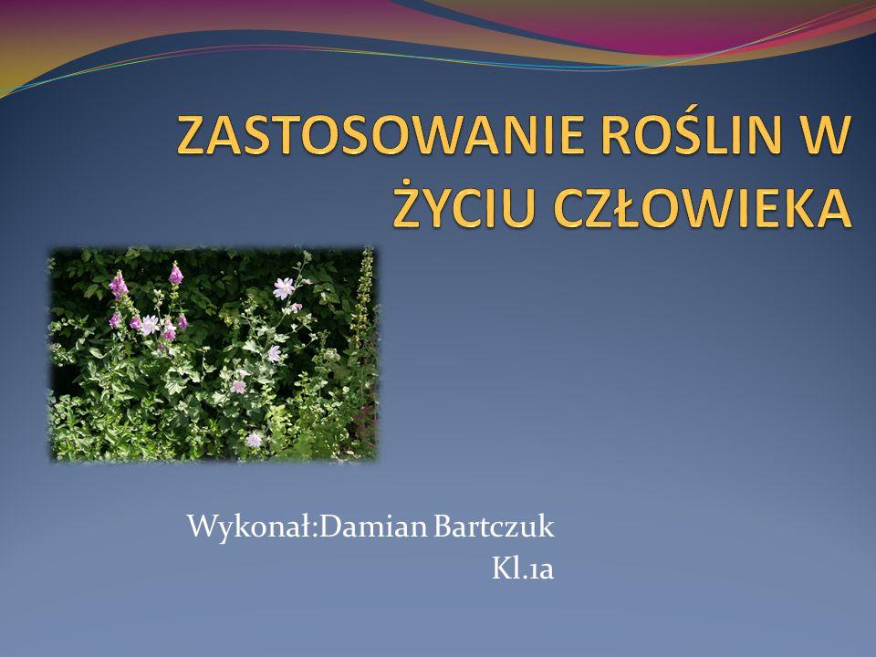 Wykonał:Damian Bartczuk Kl.1a