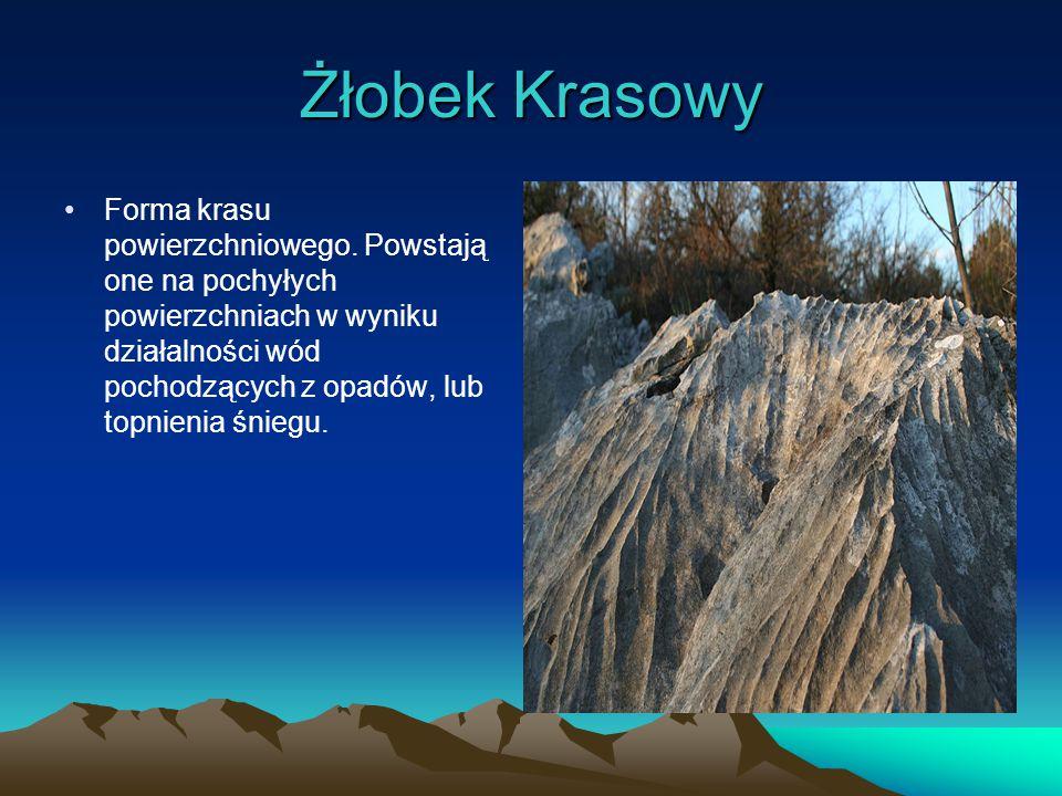 Lej Krasowy Naturalne zagłębienie terenu, zwykle w kształcie koła, lub elipsy.