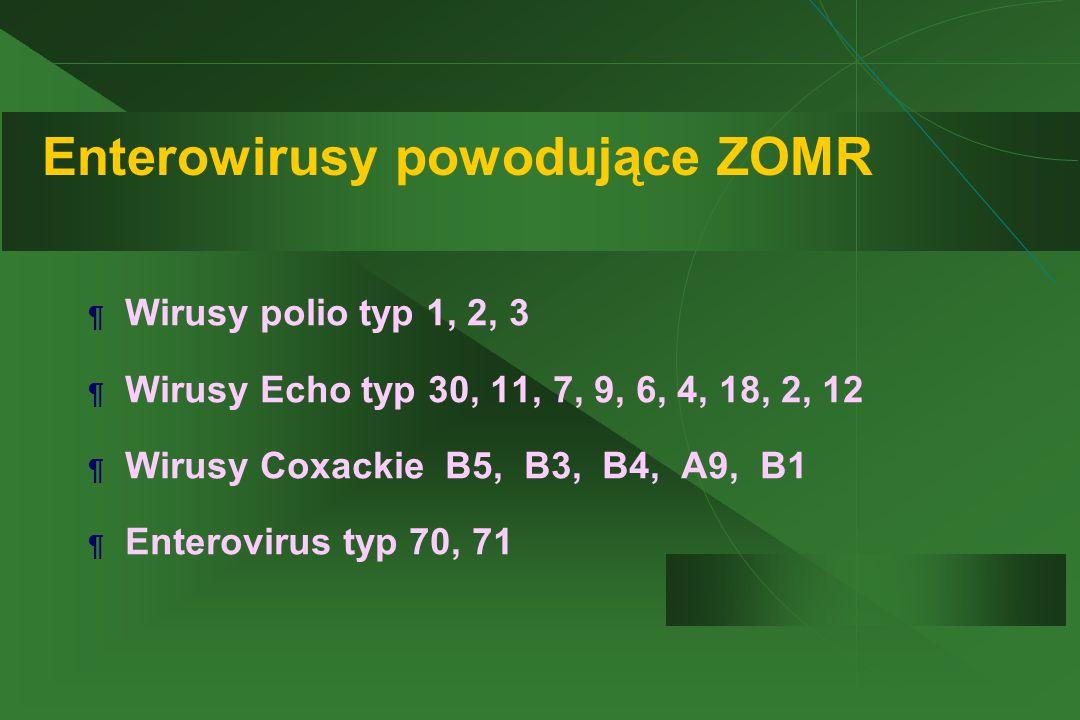 Enterowirusy powodujące ZOMR ¶ Wirusy polio typ 1, 2, 3 ¶ Wirusy Echo typ 30, 11, 7, 9, 6, 4, 18, 2, 12 ¶ Wirusy Coxackie B5, B3, B4, A9, B1 ¶ Enterovirus typ 70, 71