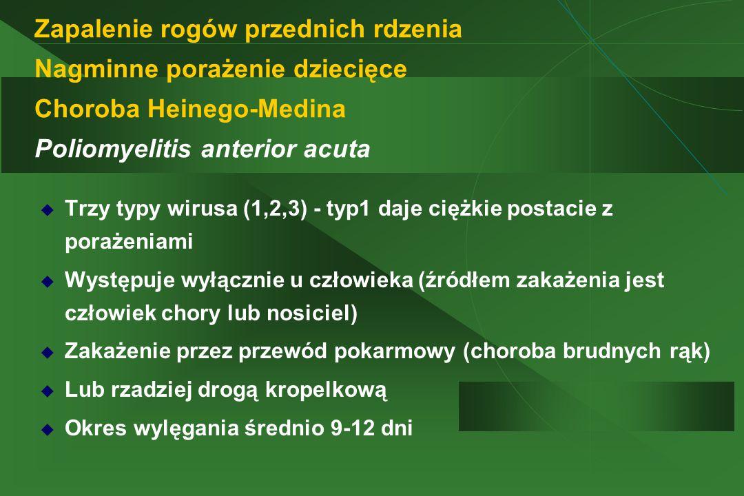 Zapalenie rogów przednich rdzenia Nagminne porażenie dziecięce Choroba Heinego-Medina Poliomyelitis anterior acuta  Trzy typy wirusa (1,2,3) - typ1 daje ciężkie postacie z porażeniami  Występuje wyłącznie u człowieka (źródłem zakażenia jest człowiek chory lub nosiciel)  Zakażenie przez przewód pokarmowy (choroba brudnych rąk)  Lub rzadziej drogą kropelkową  Okres wylęgania średnio 9-12 dni