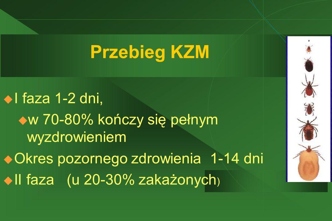 Przebieg KZM  I faza 1-2 dni, u w 70-80% kończy się pełnym wyzdrowieniem  Okres pozornego zdrowienia 1-14 dni  II faza (u 20-30% zakażonych )