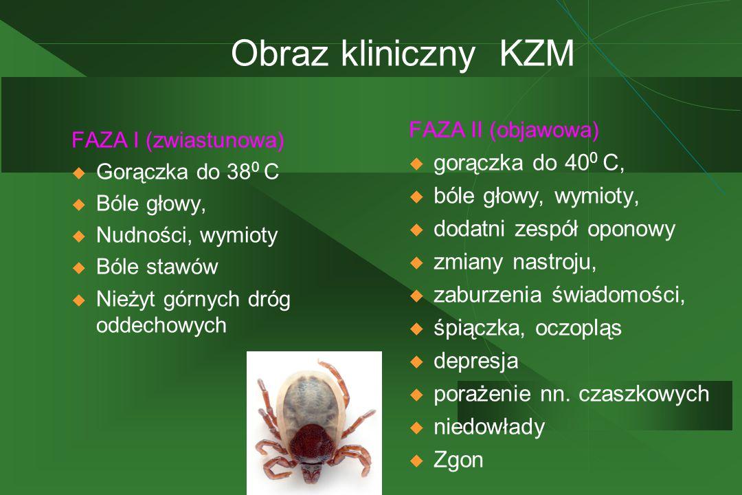 Obraz kliniczny KZM FAZA I (zwiastunowa)  Gorączka do 38 0 C  Bóle głowy,  Nudności, wymioty  Bóle stawów  Nieżyt górnych dróg oddechowych FAZA II (objawowa)  gorączka do 40 0 C,  bóle głowy, wymioty,  dodatni zespół oponowy  zmiany nastroju,  zaburzenia świadomości,  śpiączka, oczopląs  depresja  porażenie nn.