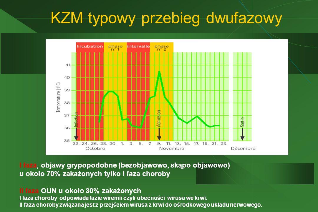 KZM typowy przebieg dwufazowy I faza, objawy grypopodobne (bezobjawowo, skąpo objawowo) u około 70% zakażonych tylko I faza choroby II faza OUN u około 30% zakażonych I faza choroby odpowiada fazie wiremii czyli obecności wirusa we krwi.