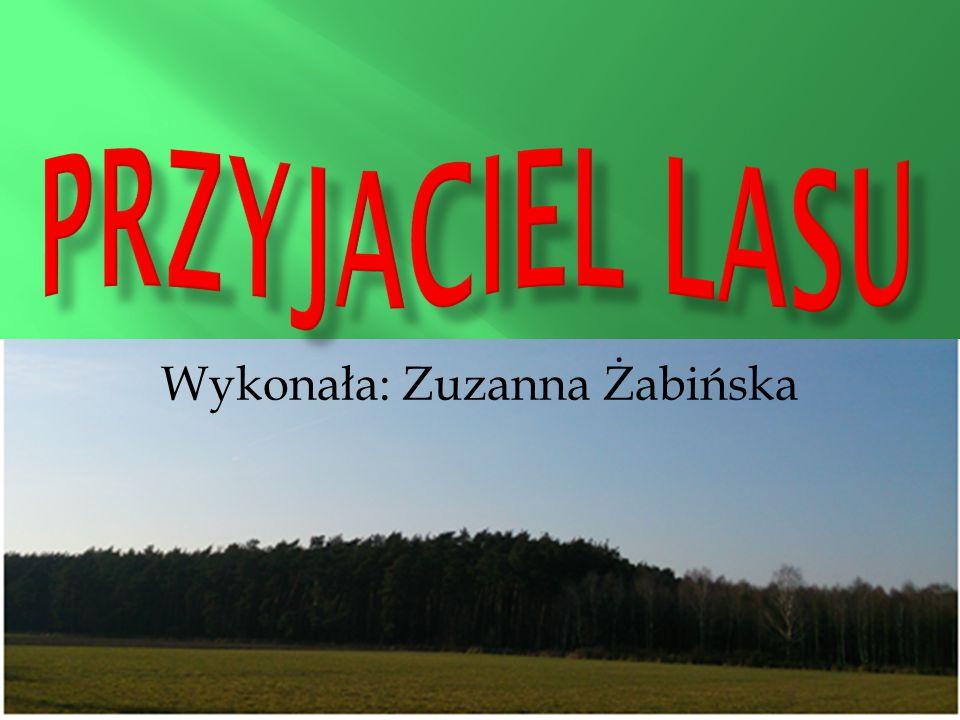 Wykonała: Zuzanna Żabińska