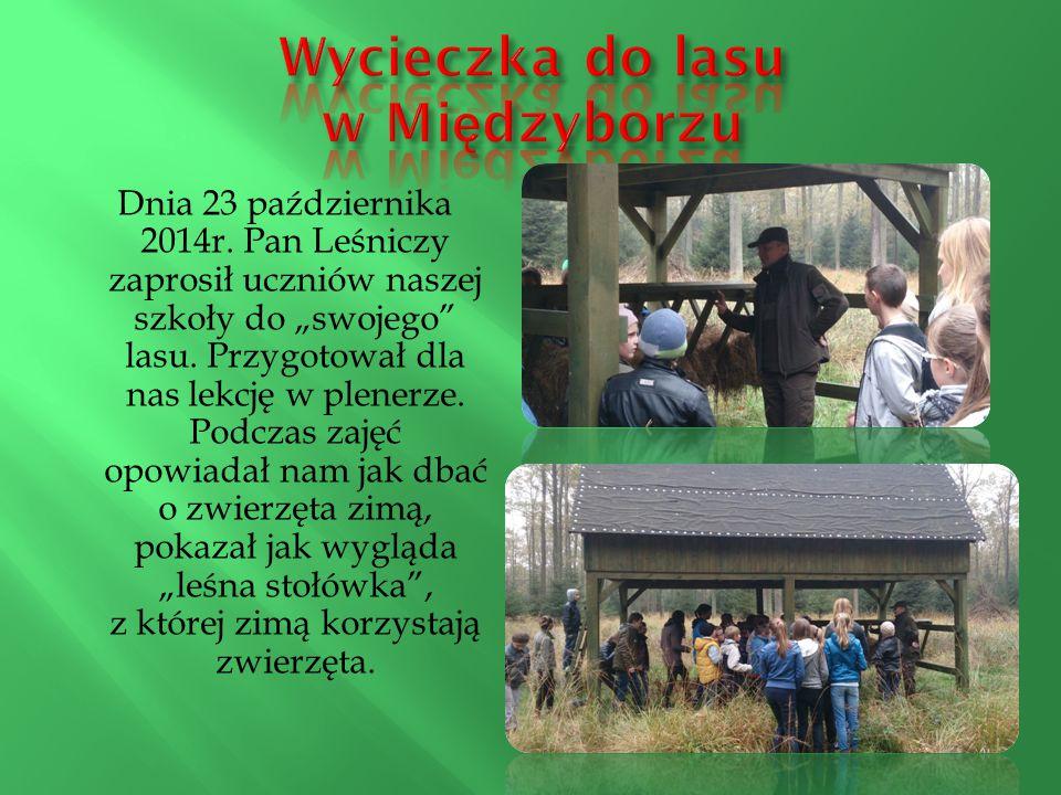 """Dnia 23 października 2014r. Pan Leśniczy zaprosił uczniów naszej szkoły do """"swojego"""" lasu. Przygotował dla nas lekcję w plenerze. Podczas zajęć opowia"""
