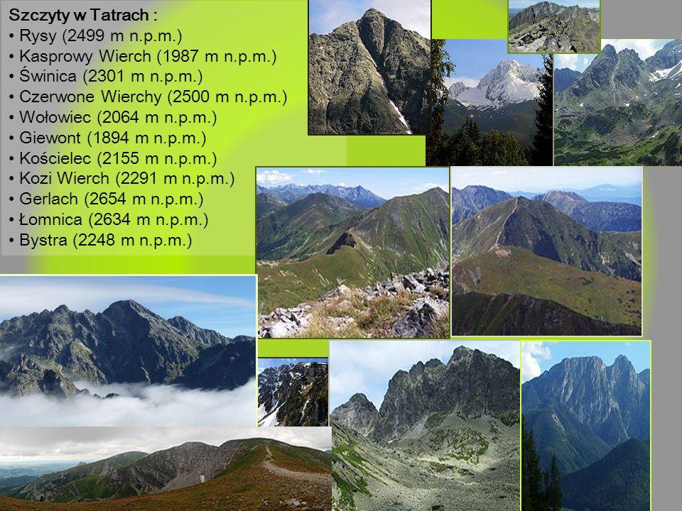 Szczyty w Tatrach : Rysy (2499 m n.p.m.) Kasprowy Wierch (1987 m n.p.m.) Świnica (2301 m n.p.m.) Czerwone Wierchy (2500 m n.p.m.) Wołowiec (2064 m n.p