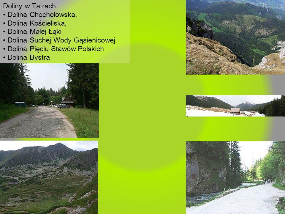 Doliny w Tatrach: Dolina Chochołowska, Dolina Kościeliska, Dolina Małej Łąki Dolina Suchej Wody Gąsienicowej Dolina Pięciu Stawów Polskich Dolina Byst