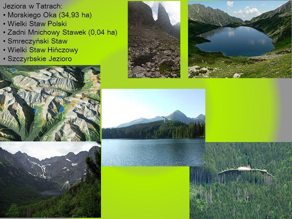 Jeziora w Tatrach: Morskiego Oka (34,93 ha) Wielki Staw Polski Zadni Mnichowy Stawek (0,04 ha) Smreczyński Staw Wielki Staw Hińczowy Szczyrbskie Jezio