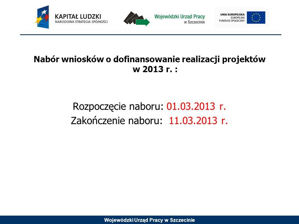 Wojewódzki Urząd Pracy w Szczecinie Nabór wniosków o dofinansowanie realizacji projektów w 2013 r.