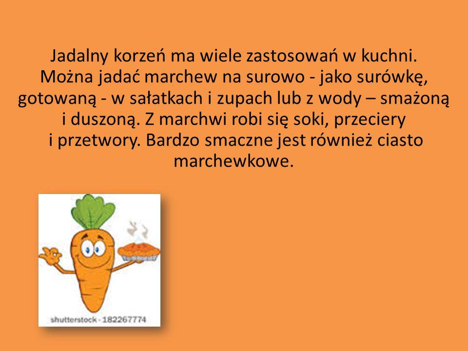 Jadalny korzeń ma wiele zastosowań w kuchni. Można jadać marchew na surowo - jako surówkę, gotowaną - w sałatkach i zupach lub z wody – smażoną i dusz