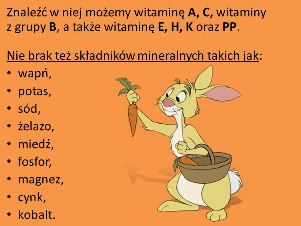 Znaleźć w niej możemy witaminę A, C, witaminy z grupy B, a także witaminę E, H, K oraz PP. Nie brak też składników mineralnych takich jak: wapń, potas