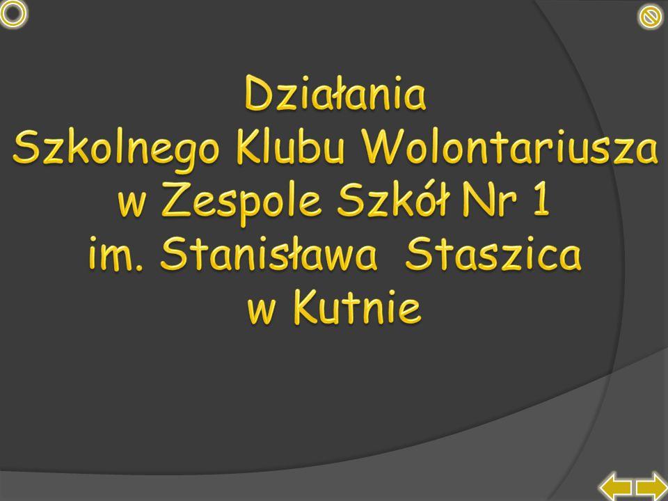 Twórcy prezentacji: Paulina Tomaszewska – tomaszewska_14@op.pl Kinga Szczecińska – szszecinska_13@op.pl Zespół Szkół Nr 1 im.
