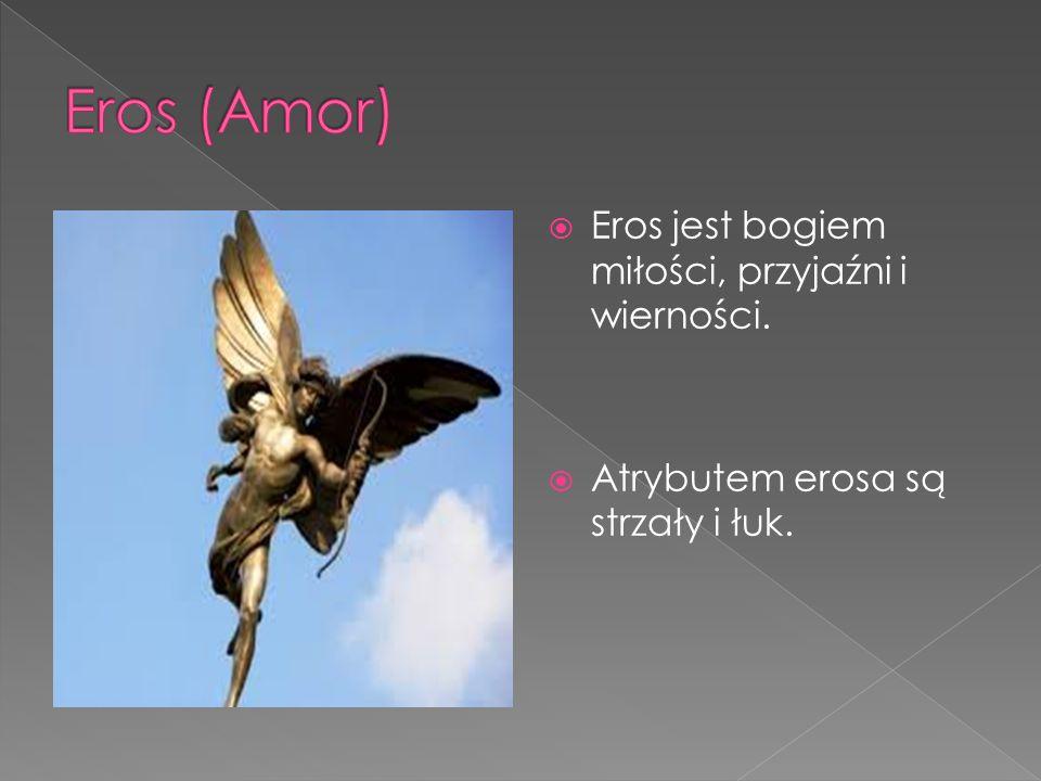 Eros jest bogiem miłości, przyjaźni i wierności.  Atrybutem erosa są strzały i łuk.