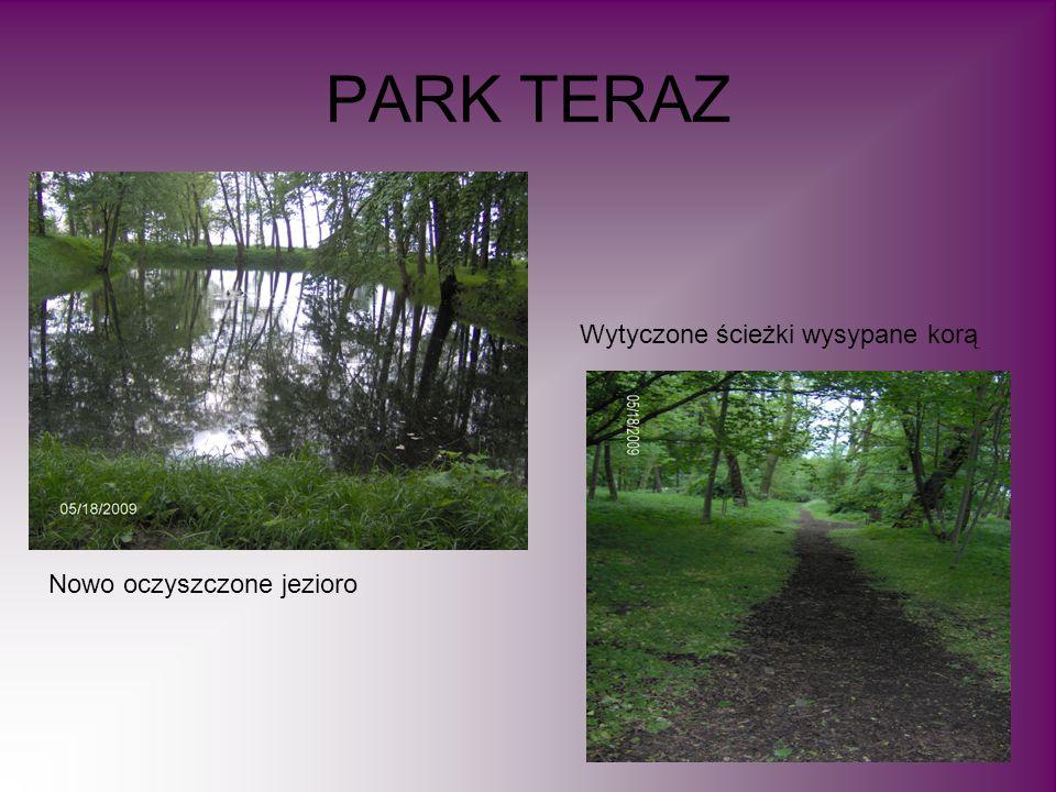 PARK TERAZ Nowo oczyszczone jezioro Wytyczone ścieżki wysypane korą