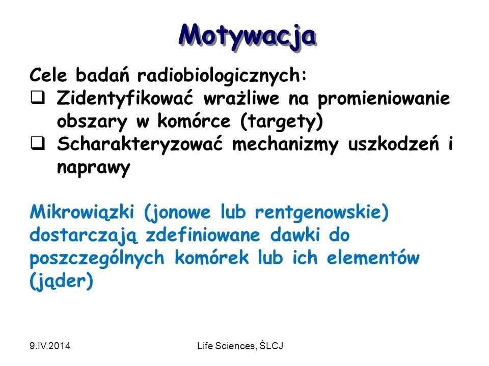 Motywacja 9.IV.2014Life Sciences, ŚLCJ Cele badań radiobiologicznych:  Zidentyfikować wrażliwe na promieniowanie obszary w komórce (targety)  Scharakteryzować mechanizmy uszkodzeń i naprawy Mikrowiązki (jonowe lub rentgenowskie) dostarczają zdefiniowane dawki do poszczególnych komórek lub ich elementów (jąder)