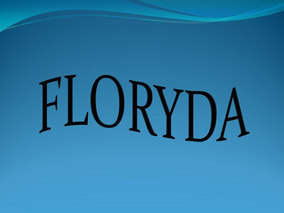Floryda- Stan na południowym wschodzie Stanów Zjednoczonych, na półwyspie Floryda otoczonym przez wody Zatoki Meksykańskiej na zachodzie i Oceanu Atlantyckiego na wschodzie.
