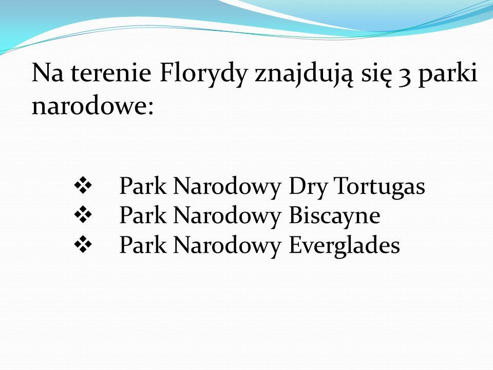 Na terenie Florydy znajdują się 3 parki narodowe:  Park Narodowy Dry Tortugas  Park Narodowy Biscayne  Park Narodowy Everglades